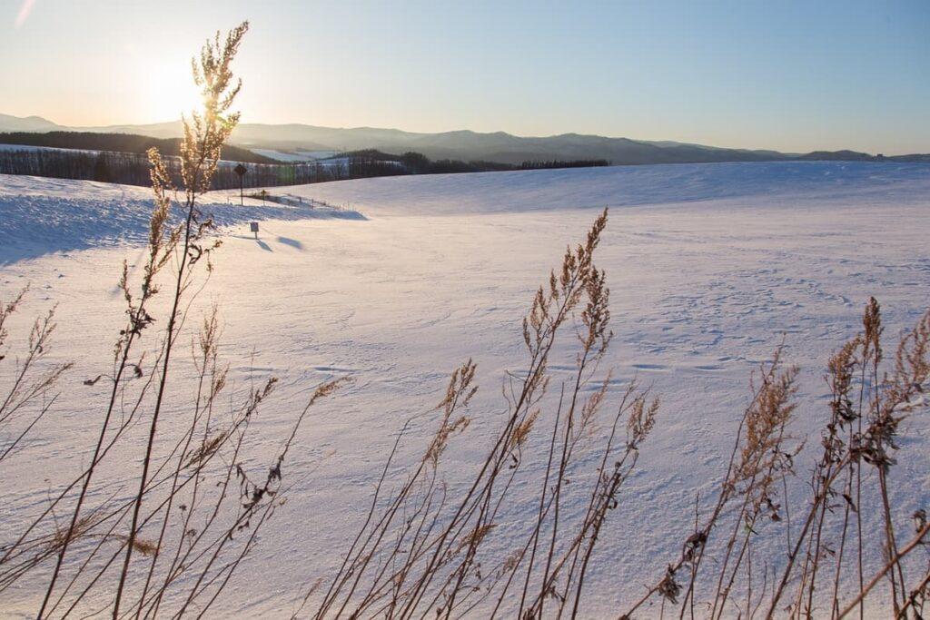 Winters in Hokkaido